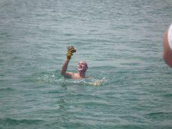 Port augusta - razor fish