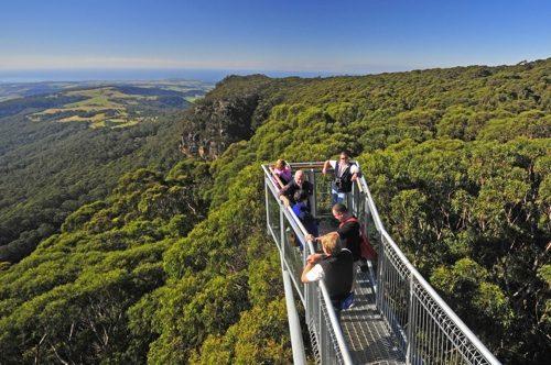 Romantic Drives Sydney To Wollongong Drivenow Blog