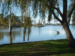 nagambie lakes1