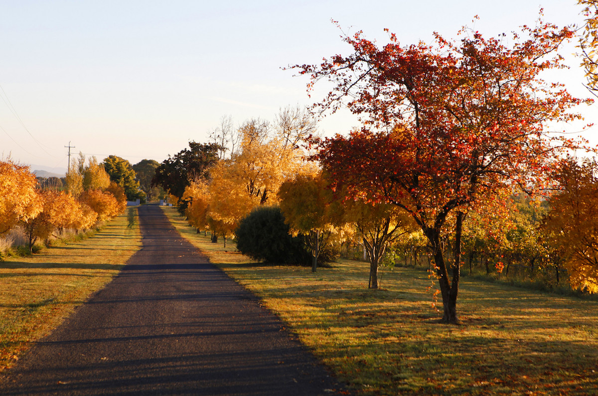 autumn destination nsw