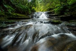 53998393 - leura waterfall.