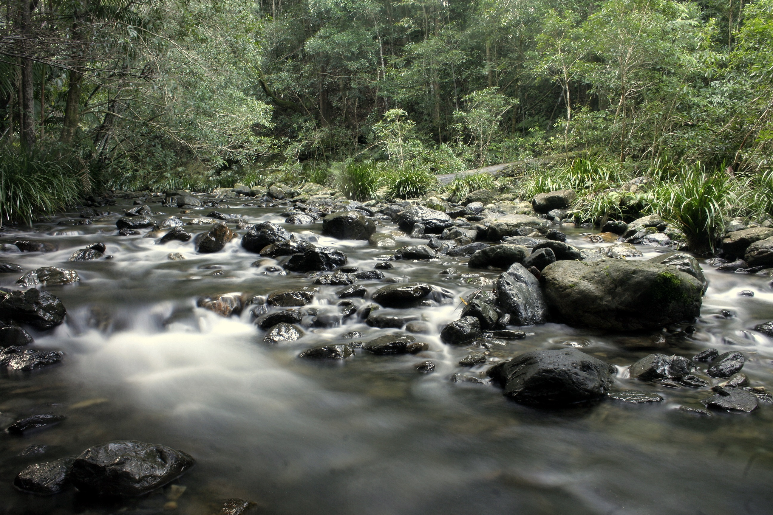 Calm waters of Bindarri National Park