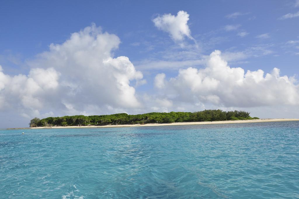 Lady Musgrave Island, Bundaberg