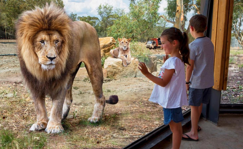 Western Plains Zoo Dubbo Drivenow