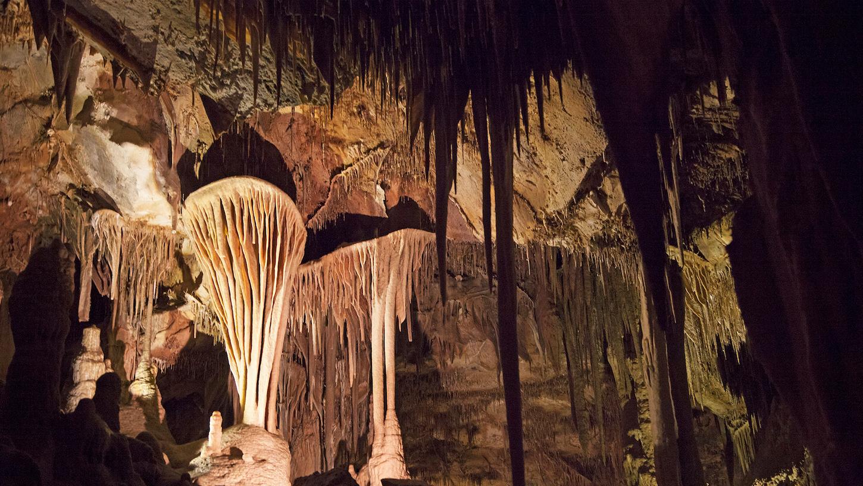 Lehman Caves Great Basin